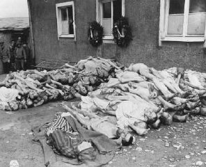 The bodies of former prisoners are stacked outside...