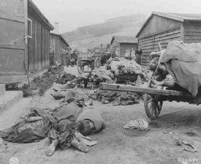 Cadavres découverts lorsque les troupes américaines...