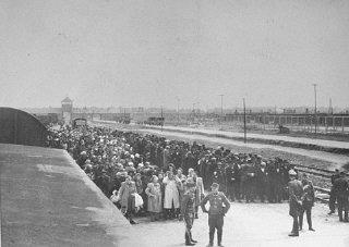 The ramp in Birkenau, May 1944.