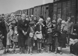 Jewish women and children deported from Hungary, separated...