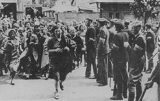 Lithuanian militiamen in Kovno round up Jews during...