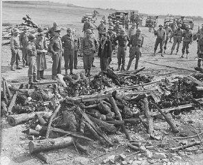 General Dwight D. Eisenhower (third from left) views...