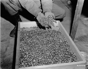 Wedding rings found by US army soldiers near the Buchenwald concentration camp.