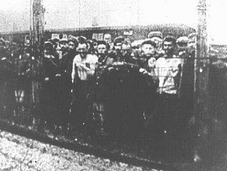 Soviet prisoners of war, survivors of the Majdanek camp, at the camp's liberation.