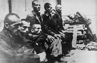 Serbs interned in the Jasenovac concentration camp...