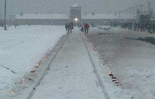 아우슈비츠 해방 60주년 기념제 기간 동안 아우슈비츠로 향하는 철로 양쪽에 밝힌 촛불.