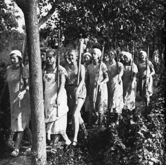 A work corps of German women marches to the fields....