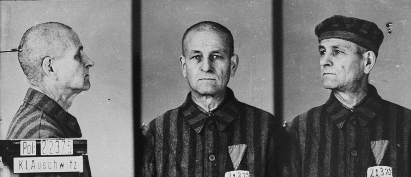 Mug shot of a homosexual prisoner in Auschwitz. Pink triangles were used to designate homosexual inmates. <i>State Museum of Auschwitz-Birkenau, Oświęcim, Poland</i>