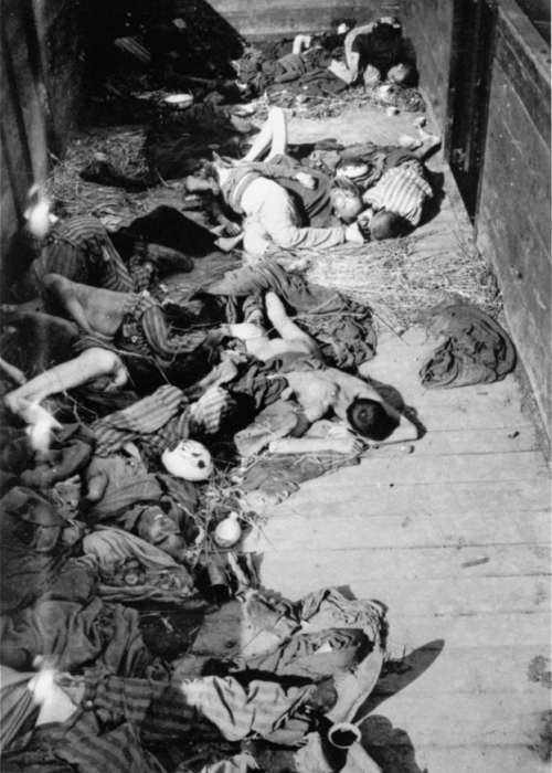 Corpses lie in one of the open railcars of the Dachau death train. The Dachau death train consisted of nearly forty cars containing the bodies of between two and three thousand prisoners transported to Dachau in the last days of the war. <i>US Holocaust Memorial Museum, courtesy of George McDaniel III</i>