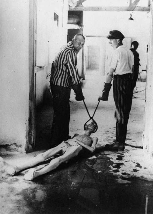 Survivors of the Dachau concentration camp demonstrate the operation of the crematorium by dragging a corpse toward one of the ovens. Dachau, Germany, April 29-May 10, 1945. <i>US Holocaust Memorial Museum, courtesy of R. Harrison</i>