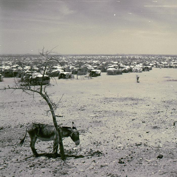 Iridimi refugee camp, Chad. The United Nations High Commissioner for Refugees has established a half dozen camps in eastern Chad. A serious challenge at Iridimi and other camps is providing enough water for the refugees. May 2004. <i>US Holocaust Memorial Museum</i>