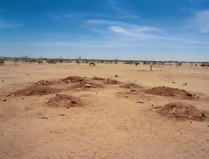 Cemetery, Iridimi refugee camp, Chad. Graves of the recently deceased, including children. May 2004. <i>US Holocaust Memorial Museum</i>