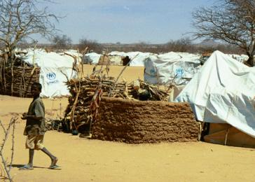 Refugees in the Iridimi refugee camp in Chad live in makeshift shelters constructed from local materials and sheeting provided by relief groups.