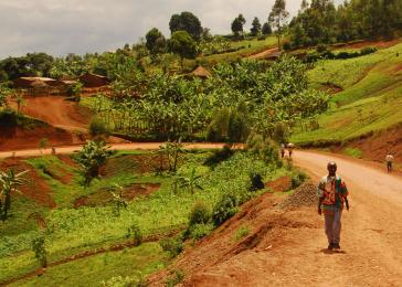 Voices from Congo: The road ahead