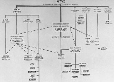 A diagram, prepared by prosecutors in the Doctors Trial, placing defendants in the command structure. Nuremberg, Germany, December 12, 1946.