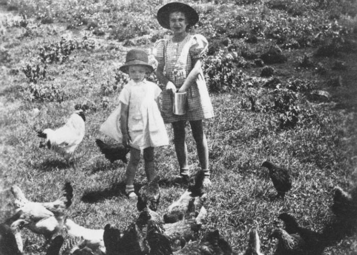 Two Jewish refugee children, Gisela Berg (right) and Hannah Mandlebaum (left), feed the chickens on their family's farm near Limuru, Kenya (Kiambu district), where they found refuge during World War II.
