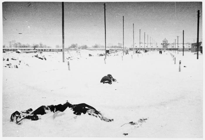 The bodies of prisoners who perished during the evacuation of Auschwitz-Birkenau lie covered in snow on the main street of the camp immediately after the liberation.