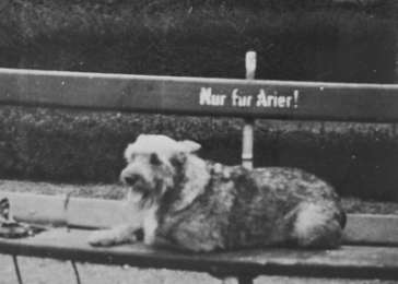 A dog lies on a park bench which is marked Nur fuer Arier  (only for aryans)