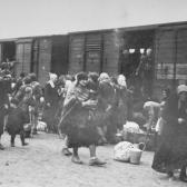 Hungarian Jews get off a deportation train and assemble on the ramp at Auschwitz-Birkenau in late May 1944. Yad Vashem.