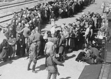 Jews from Carpathian Ruthenia undergo a selection on the ramp at Auschwitz-Birkenau.