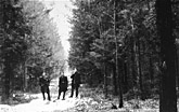 Three Jewish partisans in the Wyszkow Forest near Warsaw. Poland, between 1943 and 1944.