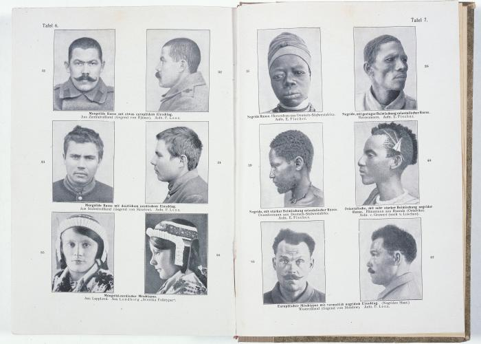 "Head shots showing various racial types. Most western anthropologists classified people into ""races"" based on physical traits such as head size and eye, hair and skin color. <i>US Holocaust Memorial Museum</i>"