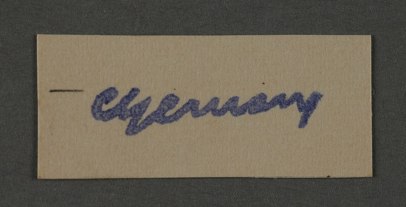1995.89.1054 front Ink stamp impression signature of an official in the Kovno ghetto