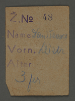 1995.89.375 front Work assignment slip from the Kovno ghetto  Click to enlarge