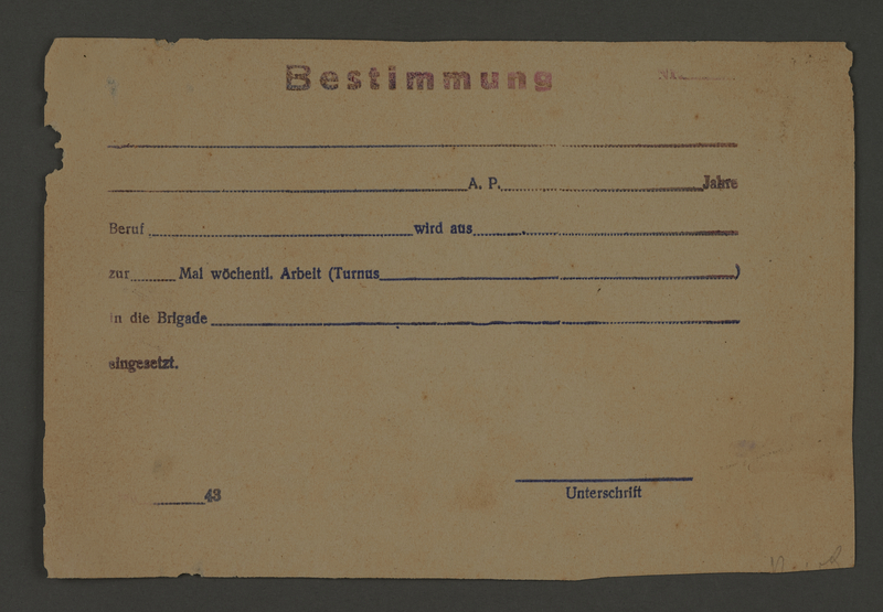 1995.89.596 front Work assignment slip from the Kovno ghetto