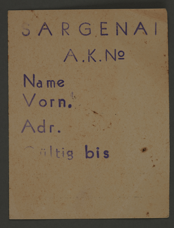 1995.89.729 front Work assignment slip from the Kovno ghetto