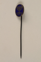 1999.98.2 front Pin worn by member of Zionist youth organization Betar  Click to enlarge