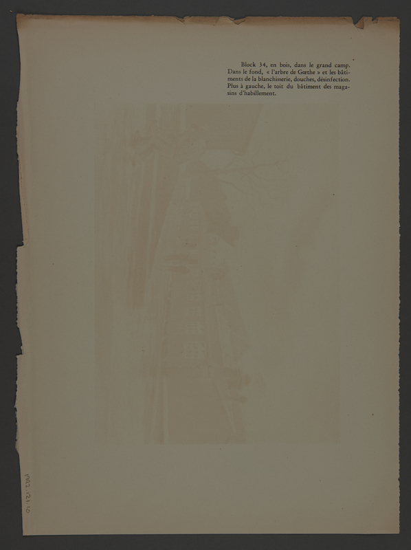 1988.121.10 back Lithograph