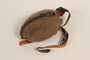 German military red painted canteen in pouch with strap acquired by US soldier