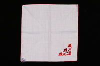 2009.117.12 front Handkerchief with multi-colored embroidery brought with a Polish Jewish emigre  Click to enlarge