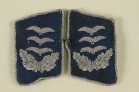 2011.75.5_a-b front Pair of blue and silver collar tabs for a Luftwaffe Hauptmann [Captain] acquired by a US soldier  Click to enlarge
