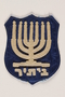 Zionist youth movement badge