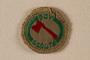 Boy Scout badge
