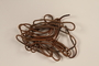 Four leather shoelaces brought to the US by a German Jewish refugee