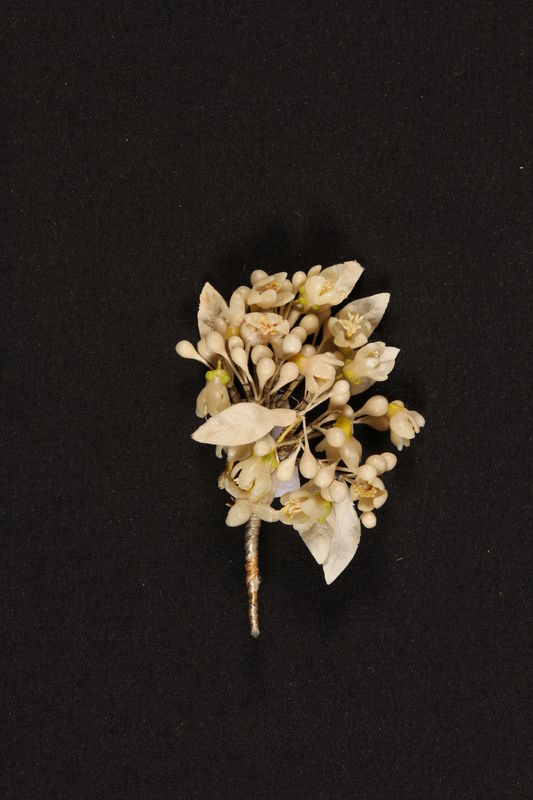1999.105.5 front Boutonniere