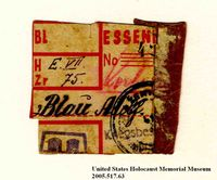 Theresienstadt ghetto-labor camp food ration coupon issued to an Austrian Jewish prisoner  Click to enlarge
