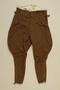 SA [Sturmabteilung/Storm Division] uniform jodphurs