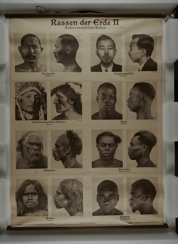 2005.350.5 front Large wall chart with 16 photos of inferior non-European races to teach racial hygiene