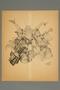 Arthur Szyk print of Jewish soldiers