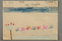 2016.527.2 front Drawing of flowers in a park created by a Jewish Austrian child  Click to enlarge