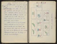 2013.160.1 Box 1 Folder 1 Image 5