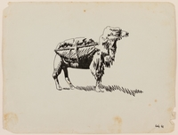 2012.471.26 front Drawing of a shaggy camel with pack created by a Jewish soldier, 2nd Polish Corps  Click to enlarge