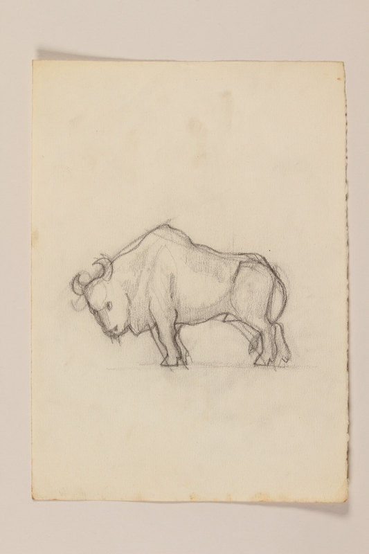 2012.471.56 front Pencil sketch of a horned bull drawn by a Jewish soldier, 2nd Polish Corps