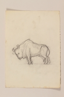 2012.471.56 front Pencil sketch of a horned bull drawn by a Jewish soldier, 2nd Polish Corps  Click to enlarge