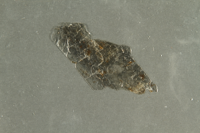 2016.552.4 side A Flake of mica collected from Theresienstadt by a German Jewish factory worker