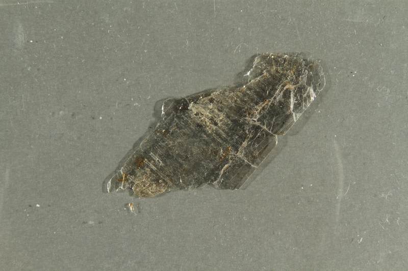 2016.552.4 side B Flake of mica collected from Theresienstadt by a German Jewish factory worker